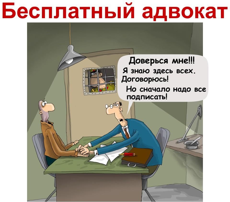 . Государственный адвокат