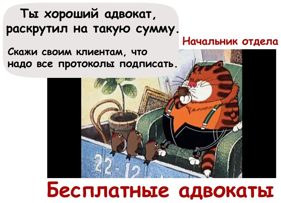 Адвокат по 51. Государственный адвокат